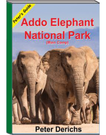 Addo Elephant National Park...