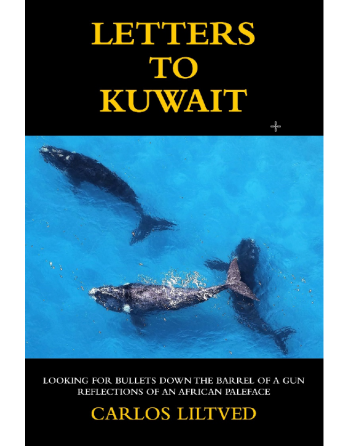 Letters to Kuwait by Carlos...