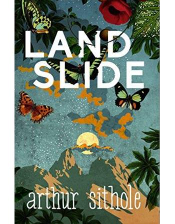 Landslide by Arthur Sithole