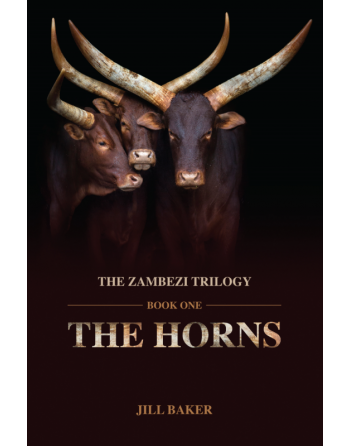 The Horns by Jill Baker
